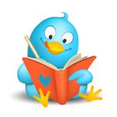 Amie's Bird